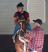 I'll Have Another gets practice standing in the paddock stall.