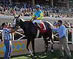 August 8, 2009.Zensational wins the Bing Crosby Stakes at Del Mar Throughbred Club, Del Mar, CA