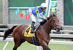 Henny's Hurricane with Alan Garcia wins the 4th race at Keeneland Race Course. Lexington, KY. 04.08.2011