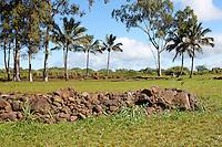 Rock formation among the Kukaniloko Birthstones near Wahiawa, O'ahu