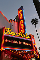 LOS ANGELES - JUN 16:  Fine Arts Theater at The Birthday Cake LA Premiere at the Fine Arts Theater on June 16, 2021 in Beverly Hills, CA