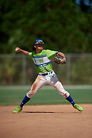 Pablo Ruiz during the WWBA World Championship at the Roger Dean Complex on October 20, 2018 in Jupiter, Florida.  Pablo Ruiz is a shortstop from West Palm Beach, Florida who attends Forest Hill Community High School and is committed to UCF.  (Mike Janes/Four Seam Images)