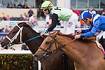 HALLANDALE BEACH, FL - JANUARY 14: #9 Flatlined with jockey Joe Bravo up (green silks) gets up late for the win in the G2 Ft. Lauderdale Stakes at Gulfstream Park. (Photo by Arron Haggart/Eclipse Sportswire/Getty Images