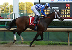 June 28, 2015 He's Comin In Hot (Jamie Theriot) wins the 114th running of the G3 Bashford Manor Stakes at Churchill Downs.  Owner Douglas Scharbauer, trainer W. Bret Calhoun. ©Mary M. Meek/ESW/CSM