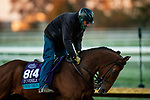 October 31, 2020: Into The Sunrise, trained by trainer Wesley A. Ward, exercises in preparation for the Breeders' Cup Juvenile Turf at Keeneland Racetrack in Lexington, Kentucky on October 31, 2020. Alex Evers/Eclipse Sportswire/Breeders Cup