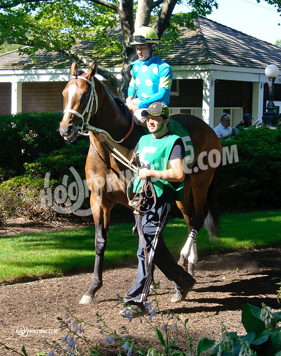 Debt Ceiling before The Oh Say Stakes at Delaware Park racetrack on 7/5/14