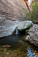Red Rock Canyon, Nevada.  Pine Creek Canyon Stream.