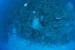 Dive giude with customers over mid reef Molokini Maui Hawaii.
