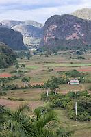 Cuba, Pinar del Rio Region, Valle de Viñales (Vinales) Area.  Limestone Mogotes in the background.