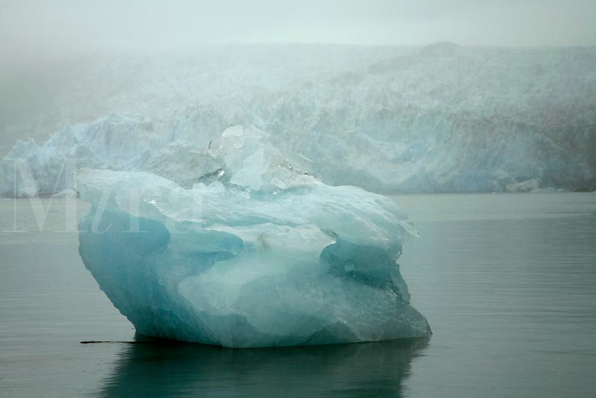 An iceberg in front of Surprise Glacier, Harriman Fiord, Harriman Fiord, Prince William Sound, Chugach National Forest, Alaska.