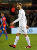 Fernando Llorente of Swansea City celebrates his winning goal during the Premier League match between Swansea City and Crystal Palace at The Liberty StadiumSwansea, Wales, UK. Saturday 26 November 2016