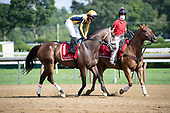 8th Troy Stakes - American Sailor (by DQ)