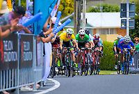 The sprint finish, as Jensen Plowright (hidden left) squeezes past Aaron Gate (yellow jersey). Stage Three - Te ara roa (Te Awamutu circuit). 2019 Grassroots Trust NZ Cycle Classic UCI 2.2 Tour from Te Awamutu in Cambridge, New Zealand on Friday, 25 January 2019. Photo: Dave Lintott / lintottphoto.co.nz