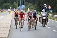 Race leaders: Mathieu van der Poel (NED/Beobank-Corendon), Dimitri Claeys (BEL/Cofidis), Taco van der Hoorn (NED/Roompot-Nederlandse Loterij), Wout Van Aert (BEL/Vérandas Willems-Crelan) & Olivier Pardini (BEL/WB Veranclassic-Aqua Protect)<br /> <br /> Dwars door het Hageland (1.1)<br /> 1 Day Race: Aarschot > Diest (194km)