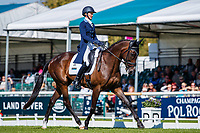 USA-Andrea Baxter rides Indy 500 during the first day of Dressage. 2019 GBR-Land Rover Burghley Horse Trials. Wednesday 4 September. Copyright Photo: Libby Law Photography