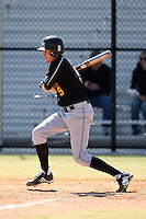March 15, 2010:  D.J. Ream of UMBC vs. Long Island University at Lake Myrtle Park in Auburndale, FL.  Photo By Mike Janes/Four Seam Images