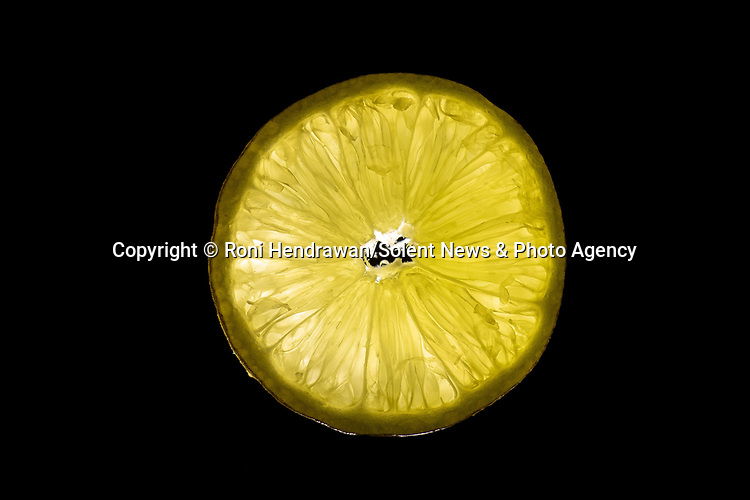 Pictured:  REVEAL:  Lemon<br /> <br /> CAPTURED USING JUST A DESK LAMP AND A CAMERA DURING LOCKDOWN.......Amazing up close photos show fruit and vegetables as you've never seen them before.  Photographer Roni Hendrawan used a special lens to capture the vibrant images of aubergines, sweetcorn, onions, limes, cucumbers, tomatoes and peppers.<br /> <br /> The 29 year old spent three months assembling the produce in lockdown from what he would ordinarily eat before doing the shoot in his kitchen with a macro lens.  SEE OUR COPY FOR DETAILS.<br /> <br /> Please byline: Roni Hendrawan/Solent News<br /> <br /> © Roni Hendrawan/Solent News & Photo Agency<br /> UK +44 (0) 2380 458800