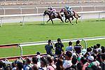 Jockey Victor Wong riding #4 Land Grant (L) and Jockey Alberto Sanna riding #6 Famous Warrior (R) during Hong Kong Racing at Sha Tin Racecourse on October 01, 2018 in Hong Kong, Hong Kong. Photo by Yu Chun Christopher Wong / Power Sport Images