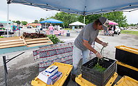 Troy Coleman of Fayetteville gets his produce ready to sell Sunday June 6, 2021 at the Farmington Farmers Market at the Farmington Junior High School parking lot. Coleman grows 28 varieties of crops on his farm Clear Water Farm in northwest Fayetteville. The market is held each Sunday from 9 A.M. to 2 P.M. from May through October. For information about the market see www.busybeescanningco.com/markets  Visit nwaonline.com/2100607Daily/ and nwadg.com/photo. (NWA Democrat-Gazette/J.T. Wampler)