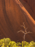 Uluru is the worlds largest monolith.  The size only becomes apparent when you try to walk around it on a 100+ degree day.  I was originally named Ayers Rock but is now officially known as Uluru.  Certainly it is Australia's best know natural landmark.  You must stay on a trail while walking around Uluru.  So this spot is not difficult to get to, but is a unique composition.