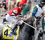 ARLINGTON HEIGHTS, IL - AUGUST 13: One Mean Man #4, ridden by Robby Albarado, during the post parade before the Secretariat Stakes at Arlington International Racecourse on August 13, 2016 in Arlington Heights, Illinois. (Photo by Jon Durr/Eclipse Sportswire/Getty Images)