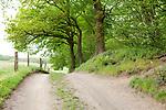 Europa, DEU, Deutschland, Nordrhein-Westfalen, Niederrhein, Sonsbeck, Sonsbecker Schweiz, Landschaft, Natur, Umwelt, Landschaft, Jahreszeiten, Stimmungen, Landschaftsfotografie, Landschaften, Landschaftsphoto, Landschaftsphotographie, <br /> <br /> [Fuer die Nutzung gelten die jeweils gueltigen Allgemeinen Liefer-und Geschaeftsbedingungen. Nutzung nur gegen Verwendungsmeldung und Nachweis. Download der AGB unter http://www.image-box.com oder werden auf Anfrage zugesendet. Freigabe ist vorher erforderlich. Jede Nutzung des Fotos ist honorarpflichtig gemaess derzeit gueltiger MFM Liste - Kontakt, Uwe Schmid-Fotografie, Duisburg, Tel. (+49).2065.677997, ..archiv@image-box.com, www.image-box.com]