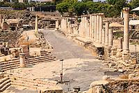 Israel, Galilee, Kiryat Tiv'on, Bet She'an national park,Roman Cardo