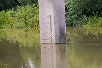 Wasserstandsanzeiger an der Erfelder Altrheinbruecke - Suedhessen 15.07.2021: Hochwasser am Rhein des sueshessischen Ried