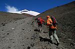 Amérique du Sud. Equateur. Trekking sur les volcans d'Equateur. Montée au refuge du Cotopaxi (5897 m) .South America. Ecuador. Trekking on the volcanoes
