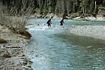Cryptid bipedal primates fording a Cascade river, Washington