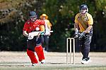 Cricket - Stoke/Nayland v Wakatu CC