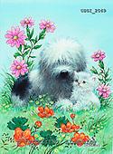 GIORDANO, CHRISTMAS ANIMALS, WEIHNACHTEN TIERE, NAVIDAD ANIMALES, paintings+++++,USGI2069,#XA# dogs,puppies