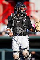 May 30, 2009:  Catcher Carlos Santana of the Akron Aeros during a game at Jerry Uht Park in Erie, PA.  The Aeros are the Double-A Eastern League affiliate of the Cleveland Indians.  Photo By Mike Janes/Four Seam Images