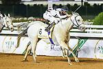 February 20, 2021: MUBASHER AL KHALEDIAH #6 ridden by A. Flfouraidi wins The Obaiya Arabian Classic for M. Mashef on Saudi Cup Day, King Abdulaziz Racecourse, Riyadh, Saudi Arabia. Shamela Hanley/Eclipse Sportswire/CSM