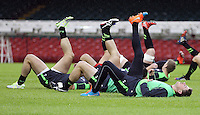 Monday 3 November 2014<br />Pictured: Rhys Priestland<br />Re: Wales rugby squad train for the Dove Men series autumn internationals on the new pitch at the Millennium Stadium, Cardiff, United Kingdom.