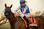 ARCADIA, CA  JANUARY 5:  #7 Bast  and jockey Drayden Van Dyke in the winners circle after winning the Santa Ynez Stakes (Grade ll) on January 5, 2020 at Santa Anita Park in Arcadia, CA.  (Photo by Casey Phillips/Eclipse Sportswire/CSM)