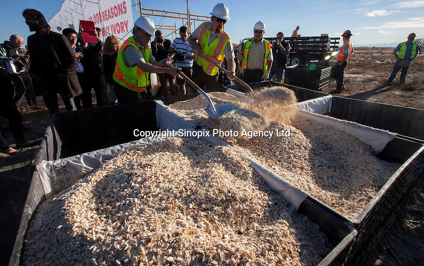 Workers shovel crushed confiscated ivory, estimated by US wildlife officials to be from around 2,000 elephants, is crushed at the National Wildlife Property Repository, Denver, Colorado, United States, 14 November 2013. The United States Fish and Wildlife Service destroyed their entire stockpile of seized ivory dating back to the 1980's by using a rock crushing machine to send a strong signal to poachers in Africa, and consumers in Asia and the United States, that the US government will not tolerate ivory trafficking. Elephant populations are in steep decline due to poaching and rampant demand, mostly from China, but also the US. The US confiscated ivory destruction follows similar symbolic events in the Gabon, Kenya and Philippines.