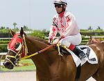 10 July 2010: Chihulykee and Jockey Manoel Cruz after the Bob Umphrey Turf Sprint Handicap at Calder Race Course in Miami Gardens, FL.