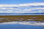 Low tide on a day with sunny skies and puffy clouds at Dash Point State Park in Federal Way, WA reveals tide flats and tide pools scenic vistas.  City of Des Moines, Wa in background.
