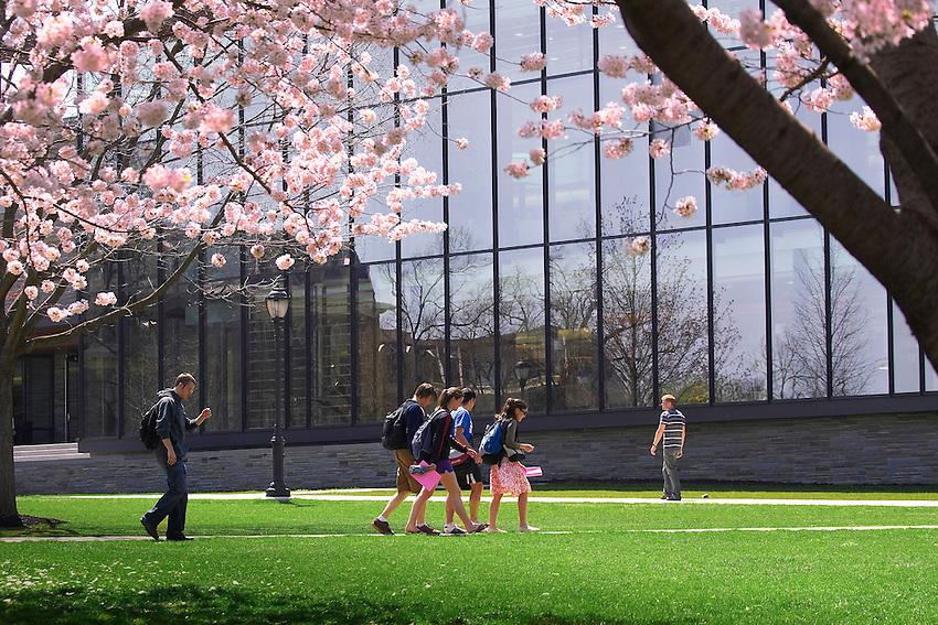 Various Campus Scenics taken on monday april 23,2007..4108.Skillman.Blossom