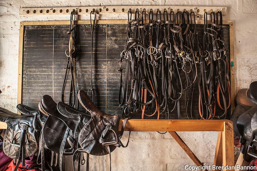 Saddles and bridles hang in the tackroom of  trainer  patsy Sercombe's yard at the Ngong Racecourse,  Nairobi, Kenya. March 13, 2013. Photo: Brendan Bannon