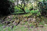 The remains of the kitchen or cooking area of the King Kamehameha III Summer Palace (or Kaniakapupu Ruins), Nu'uanu Valley, O'ahu.