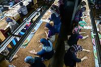 TURKEY Duzce, hazelnut processing plant of Karter Ltd. in Cumayeri , women sort nuts after cracking by machine / TUERKEI, Duezce, Firma Karter Ltd. in Cumayeri, Haselnussverarbeitung und -handel, Frauen sortieren Haselnuesse nach dem maschinellen Knacken, Haselnuss ist ein wichtiger Rohstoff fuer Schokocreme wie Nutella oder die Schokoladenindustrie