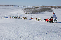 Sunday March 11, 2007   ----   Paul Gebhart runs down a hill onto a slough  nearing Unalakleet on Sunday afternoon.