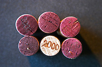 Six corks stamped with the year 2000, five with the red wine stamped side up and one with the top side up. Buenos Aires Argentina, South America