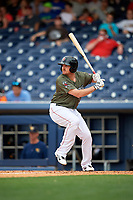 Nashville Sounds right fielder Chris Parmelee (25) at bat during a game against the New Orleans Baby Cakes on April 30, 2017 at First Tennessee Park in Nashville, Tennessee.  The game was postponed due to inclement weather in the fourth inning.  (Mike Janes/Four Seam Images)