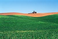 Wheat field and tractor.  Palouse region. Whitman County, WA