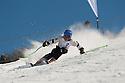 BISS Alpine Champs