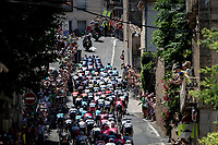 peloton rolling through town<br /> <br /> Stage 13 from Nîmes to Carcassonne (220km)<br /> 108th Tour de France 2021 (2.UWT)<br /> <br /> ©kramon