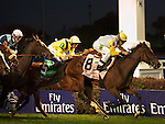 Nov.4, 2011.Perfect Shirl ridden by John Velazquez and trained by Roger L. Attfield crossing the finish line and winning the  Emirates Airline Breeders' Cup Filly & Mare Turf at Churchill Downs, Louisville, KY